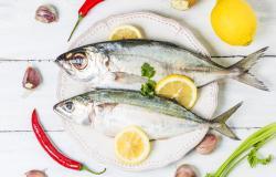 ikan_omega 3_kanker_payudara