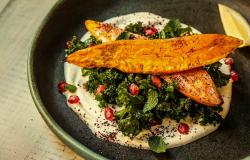 manfaat diet rendah lemak